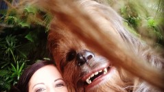 Here is what happens when you give your phone to a Wookiee at Star Wars Weekends